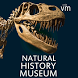 Natural History Museum Full by Museum Tour Guides Ltd