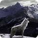 White Wolf Wallpaper by WallpapersCompany