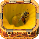 Beekeeping Made Easy by Villeapps