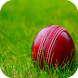 Cricket Wallpaper HD by Android Wallpaper Developers