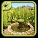 Mini Garden Ponds Design by Black Arachnia