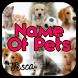 The Pet's Name | Cat & Dog