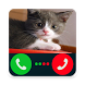 Fake Call Cat by Vithoondev