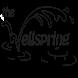 The Wellspring Church by KSM Labs LLC