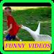 Funny Videos by ganardinero.videosgraciosos