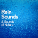 Natur and Rain Relaxing Sounds by PeterTechApp