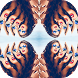 Crazy Snap Photo Effect Mirror by EasternStudio.Inc