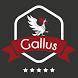 Gallus by World Wide Media