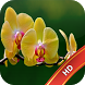 Orchid Live Wallpaper by BuaStudio
