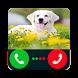 Fake Call Dog by Chalala