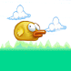 Birdy Flap by Net Byte Game Factory