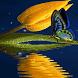Blue Butterfly Live Wallpaper by Daksh Apps