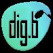 Dig.B