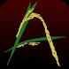 Aaskin Rice by Aaskin