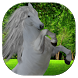wallpapers for Stable Horses by PicStreet DEV