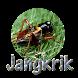 MP3 SUARA JANGKRIK by crockerdav