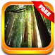 Nature Forest Sounds Relax by PlaySync