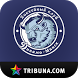 ХК Динамо Минск+ Tribuna.com by Sports.ru