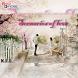 Novel Cinta Scenarios of Love by BukuOryzaee Dev