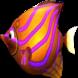 大魚吃小魚 by lizhonghua