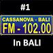 Cassanova 102 FM by CyberApps Software Corporation
