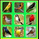 Canto de pássaros Silvestres by nella kharisma dev