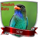 Master Kicau Tengkek Buto Mp3