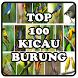 TOP 100 Kicau Burung