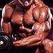 Build Lean Muscle by Gaharu Studio