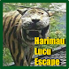 Harimau Lucu Escape by ProudPepperoniGames