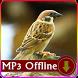 Suara Burung Gereja untuk Masteran Offline by kicaumania suara burung