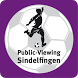 Public-Viewing Sindelfingen by Congress Center Böblingen / Sindelfingen GmbH