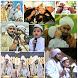 Sholawat cucunya habib syech lengkap by nella kharisma dev