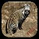 Civet Game Puzzle by suwitri irianto