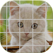 Tile Puzzle Cats (NoAds) by TQNST