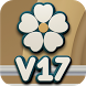 V17 HD Icon Pack by SaintBerlin