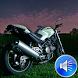 Motorcycle Sounds Ringtones by msd developer multimedia