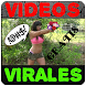 Free viral videos by Franaplicacionesgratis