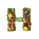 HealthyLife by HealthyLife