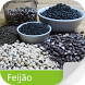 Pragas do Feijão + by Agrimind