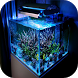 Aquarium Designs Ideas by Vioz
