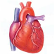 Heart Care by Patient Data Science, LLC. New York, USA