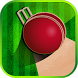Bing Bong Cricket by MicroMini Apps