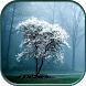 Kokie Nature Wallpapers by DaVinci Wallpapers