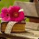 Pensamientos Románticos Fotos by Apps-Gratis