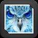 White Owl GIF Live Wallpaper