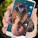 Snake run on screen joke by Exposure Inc