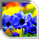 Flowers Live Wallpaper by POP TOOLS