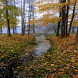 Rainy Autumn Live Wallpaper by Daksh Apps