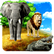 Jungle Animals Hunting 2016